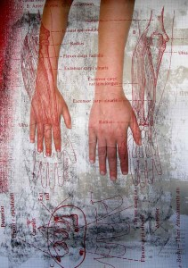 Anatomy: Hands